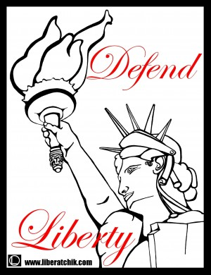 Defend Liberty Border Contact