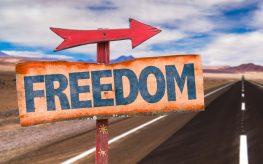 freedom learn liberty