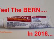 Feel_the_Bern_2016