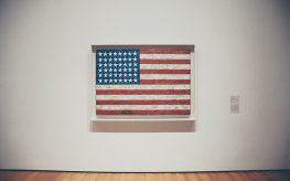 american wfp flag art gallery