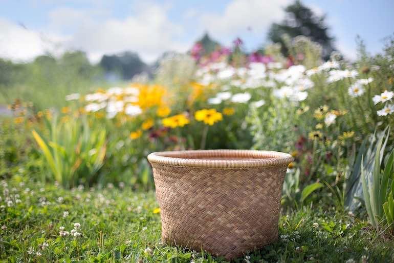 basket field flowers deplorable wfp