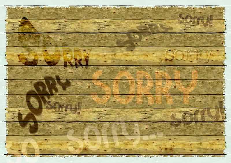 sorry apology apologize error mistake wfp